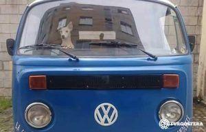 Viajar con perro en furgoneta camper