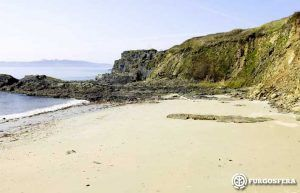 Playas para perros Galicia