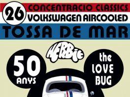 Concentración VW Aircooled