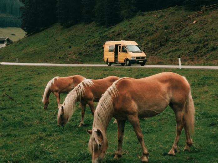 Viajar con la furgo, pros y contras