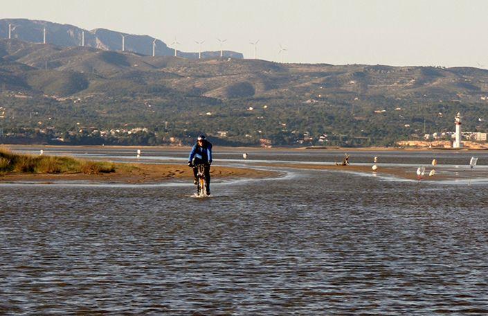 Cicloturismo en la Punta del Fangar